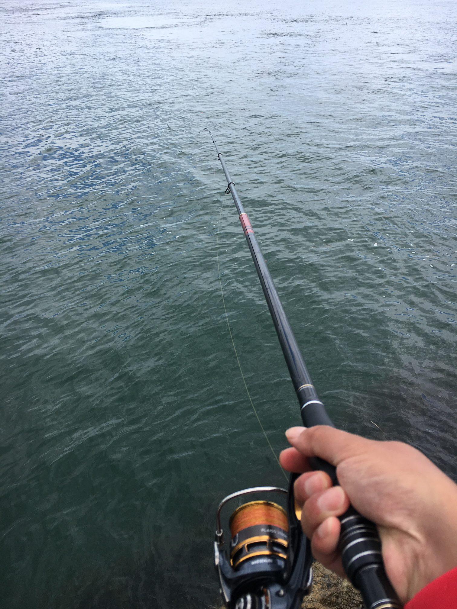 釣り フカセ